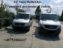Transport marfa si colete Romania - Belgia - Romania