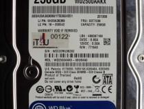 """Hard Disk Sata 3,5"""" HDD-250 Gb Western WD2500AAKX-08U6AA0"""
