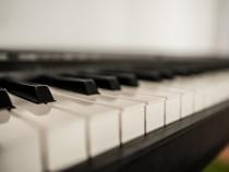 Lectii de pian (metoda noua)
