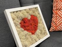 Tablou inima licheni 25x25 cm
