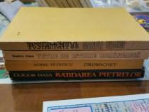 Romane istorice