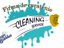 Firma de curățenie