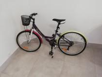Bicicleta dama Exalta adusa din Franța