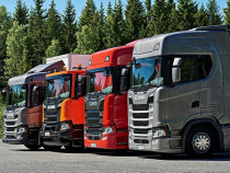 Manager transport marfa