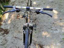 """Bicicleta MTB-26"""" Terra Foxx-21 Viteze"""