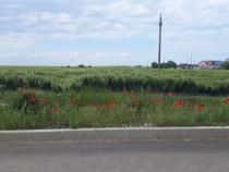 Teren Tuzla 500 mp