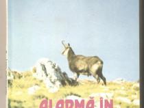 Gheorghe Colt-Alarma in Bucegi
