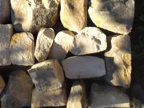Piatra pentru Beci Gard Fosă