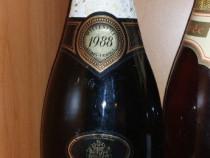 Sampanie vin vechi