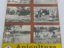 Revista apicultura în românia nr. 9 /1982