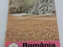 Revista românia apicolă nr. 12 /1993