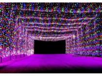 Perdea 600 leduri 6m / 3m Multicolor exterior NM 6021 / Inst
