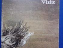 Vizite - Mircea Albulescu / R3F