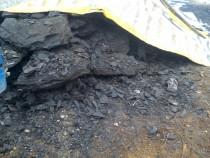 Cărbuni lignit si lemne foc tăiate