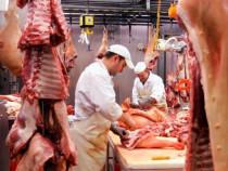 Macelari transatori porc