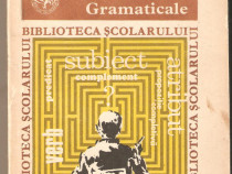 Aurel Nicolescu-Analize Gramaticale