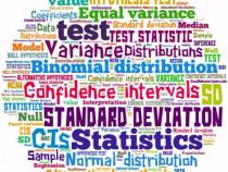Statistica Aplicata in Excel