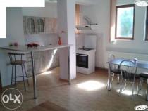 Apartament cu 2 camere de lux in vila in Exercitiu