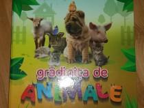 Album educativ pentru copii - Gradinita de animale