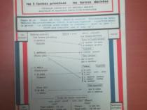 Verbele iregulate în lb. franceza-M.Richter, 1946