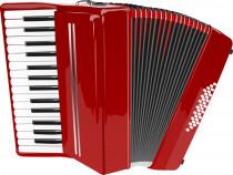 Lectii acordeon incepatori