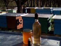 Miere si alte produse apicole