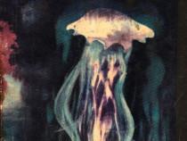 Intilnire cu meduza Autor(i): Mircea Oprita