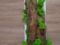 Tablou lichenii