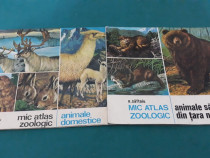 Lot 2 cărți : mic atlas zoologic*animale domestice, animale