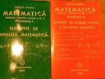 Matematica clasa XI vol I + II de Mircea Ganga