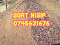 Transport# sort #nisip# balast# pamant negru#