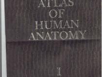 Atlas of human anatomy (pdf) de r.d.sinelnikov