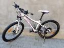 Bicicleta, mtb, ghost