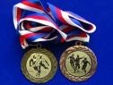 Medalii Cehia-Germania 1958-2013
