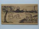 Carte postala pe lemn