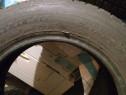 Anvelope Dunlop 175/65 R14