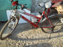 Bicicleta mountain bike unisex roti pe 24 stare perfecta