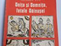 Carte pentru copii onita si domnita fetele gainusei