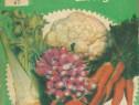Carte Preparate culinare din legume, retete