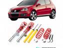 Kit suspensie sport reglabila A3, Passat B6,CC, Leon,Golf V