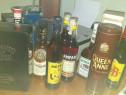 Whisky,bauturi