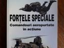 Fortele Speciale, comandourile aeropurtate - Vasile Soare