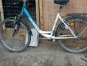 Bicicleta mackenzie
