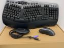Tastatura Microsoft Wireless Natural MultiMedia WUR0385
