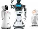 Repar și intretin roboti umanoizi