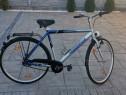 Bicicleta Greenfield
