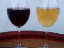 Vin Nobil Merlot Excelent