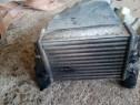 Radiator ulei termoflot audi a4 b5 1.9 tdi