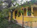 Casa pe malul Dunarii (bratul Borcea ) Dichiseni Calarasi
