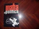Mafia si politica *